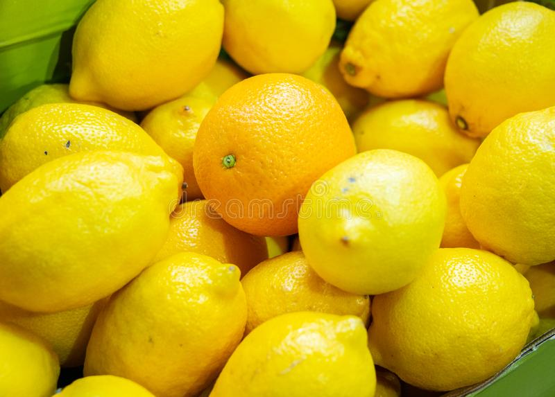 The citrus fruits at the market display stall stock image