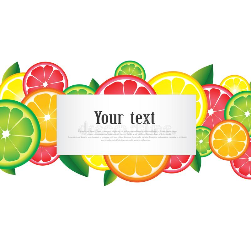 Citrus fruits ornament frame with space for text on white background.  stock illustration
