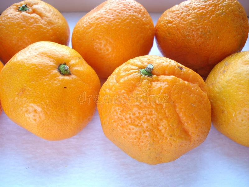 Mandarins on a white background, close-up. royalty free stock photos