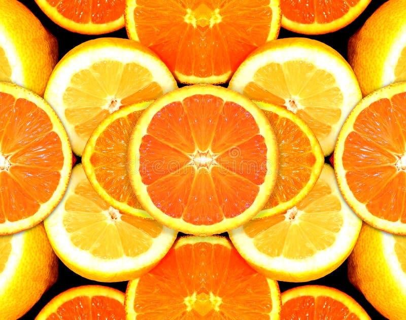 citrus fuitscitronorange arkivbild