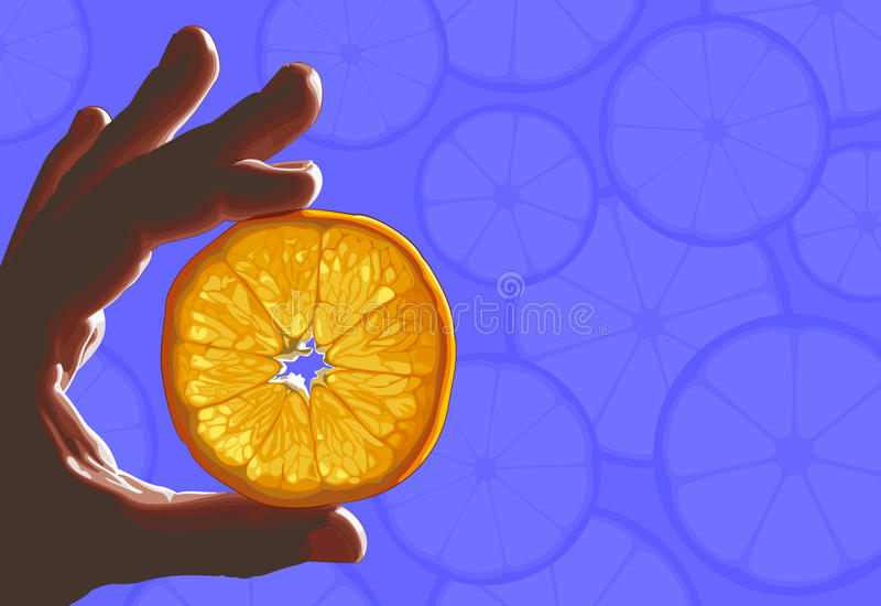 Download Citrus in hand stock vector. Illustration of fruit, candid - 22060790