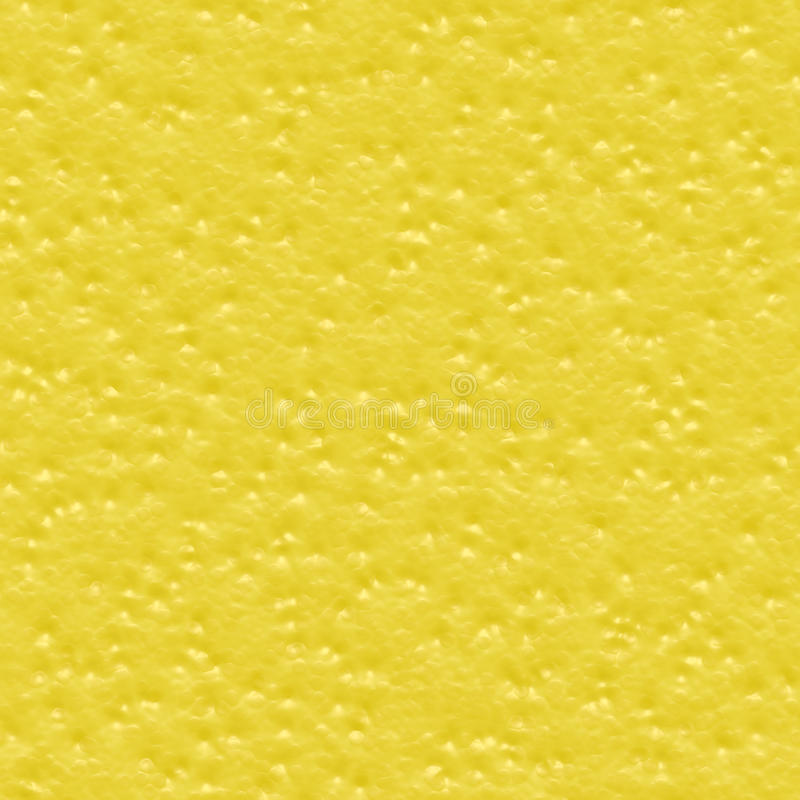 citrus hud arkivbild