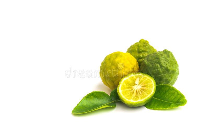 Citrus hystrix, bergamot, kaffir lime, leech lime isolated on white background. stock photo
