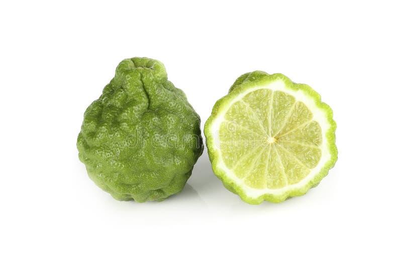 Citrus hystrix, Bergamotvitbakgrund royaltyfria bilder