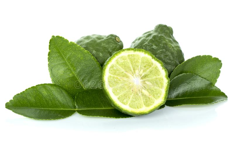 Citrus hystrix and green leaf royalty free stock image