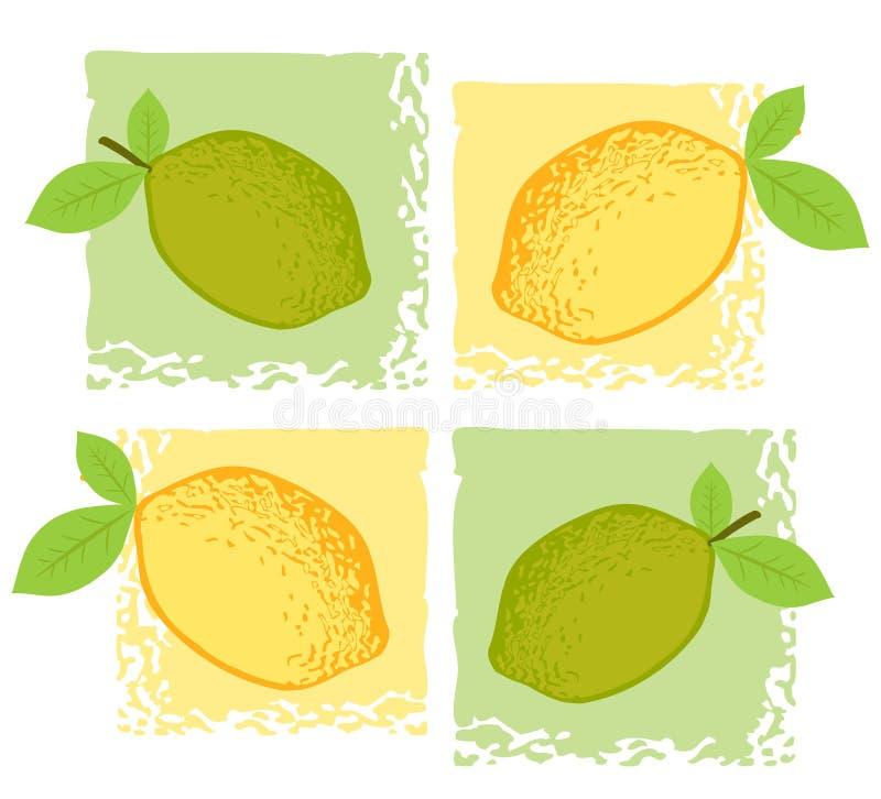 Citrus illustration stock photos