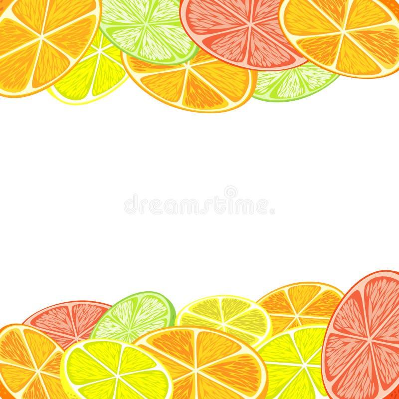 citrus klar text för bakgrund vektor illustrationer