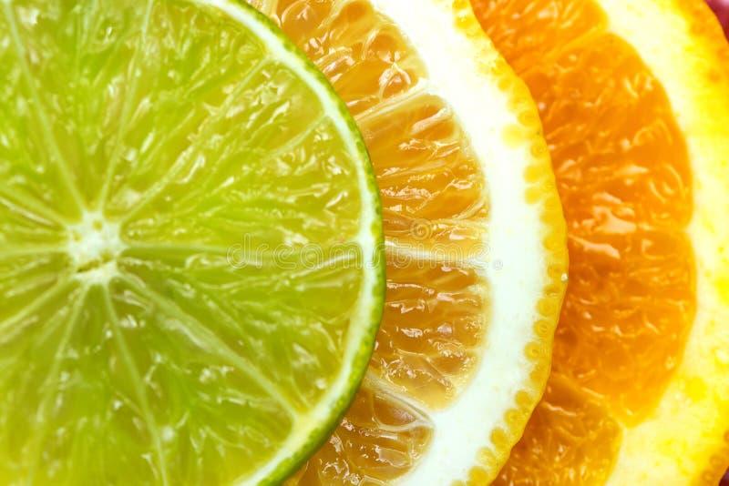 citrus klar text för bakgrund royaltyfri fotografi