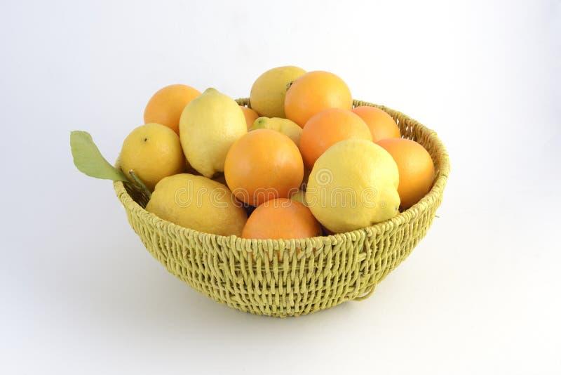 Citrus korg med apelsiner och citroner royaltyfri fotografi