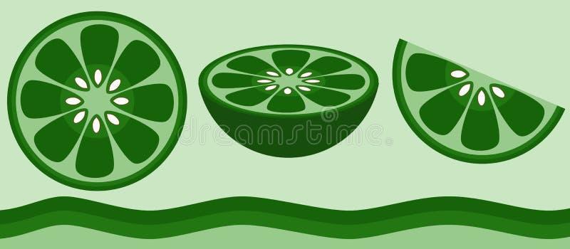 citrus limefrukt stock illustrationer