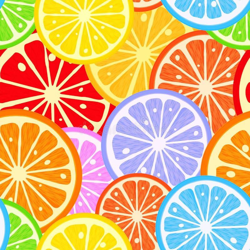 Citrus modell vektor illustrationer