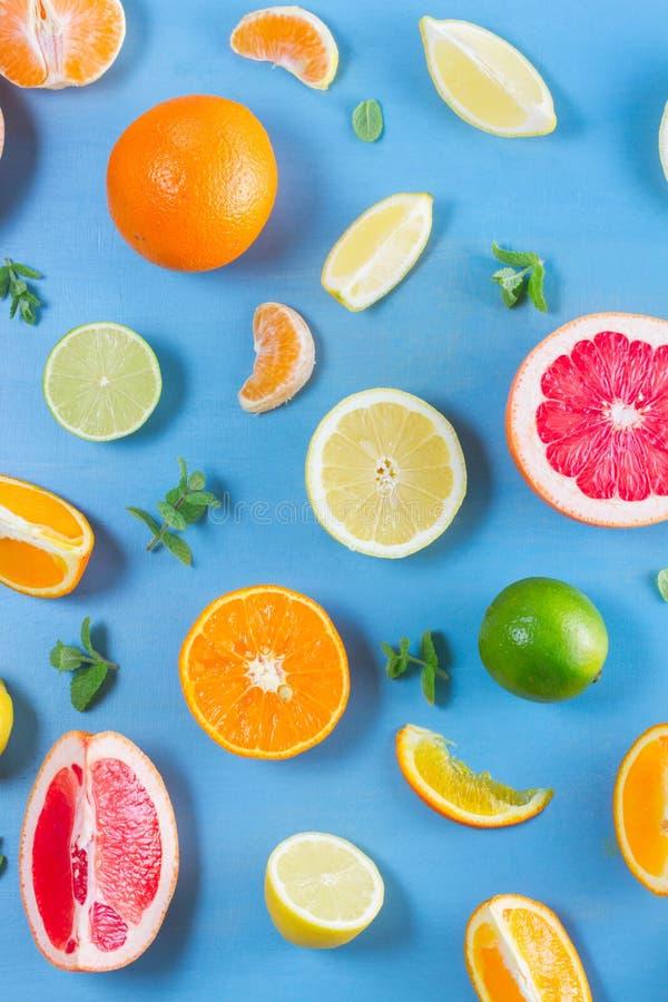 Citrus modell på blått arkivbilder