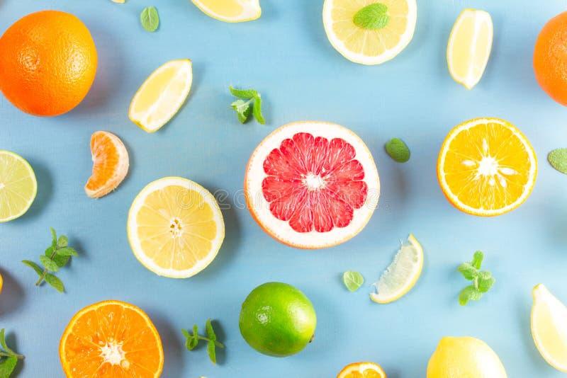 Citrus modell på blått royaltyfri bild