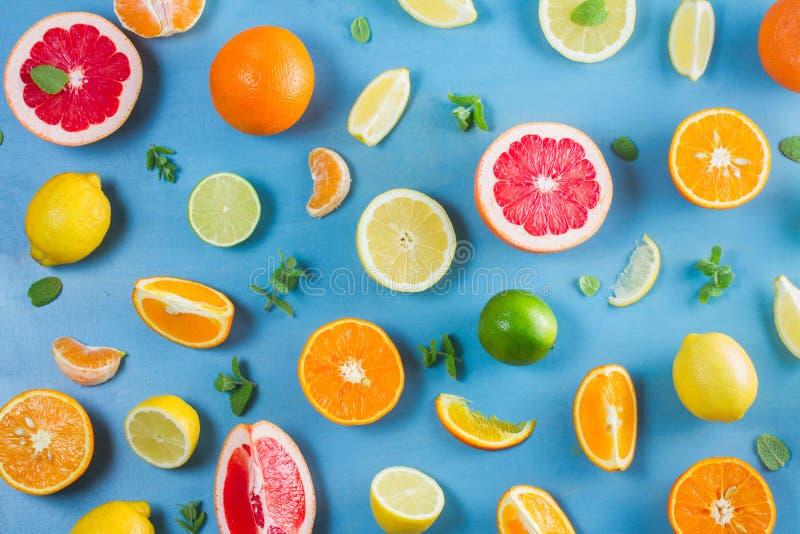 Citrus modell på blått royaltyfria foton