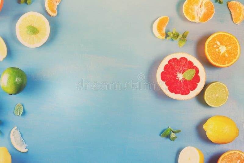 Citrus modell på blått fotografering för bildbyråer