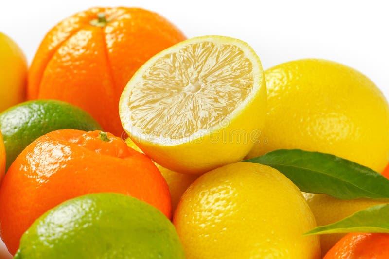 citrus ny frukt royaltyfri foto