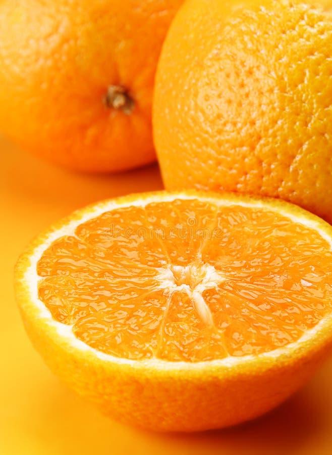 Citrus orange stock photo