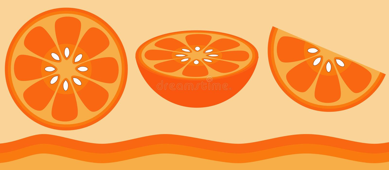 citrus orange royaltyfri illustrationer