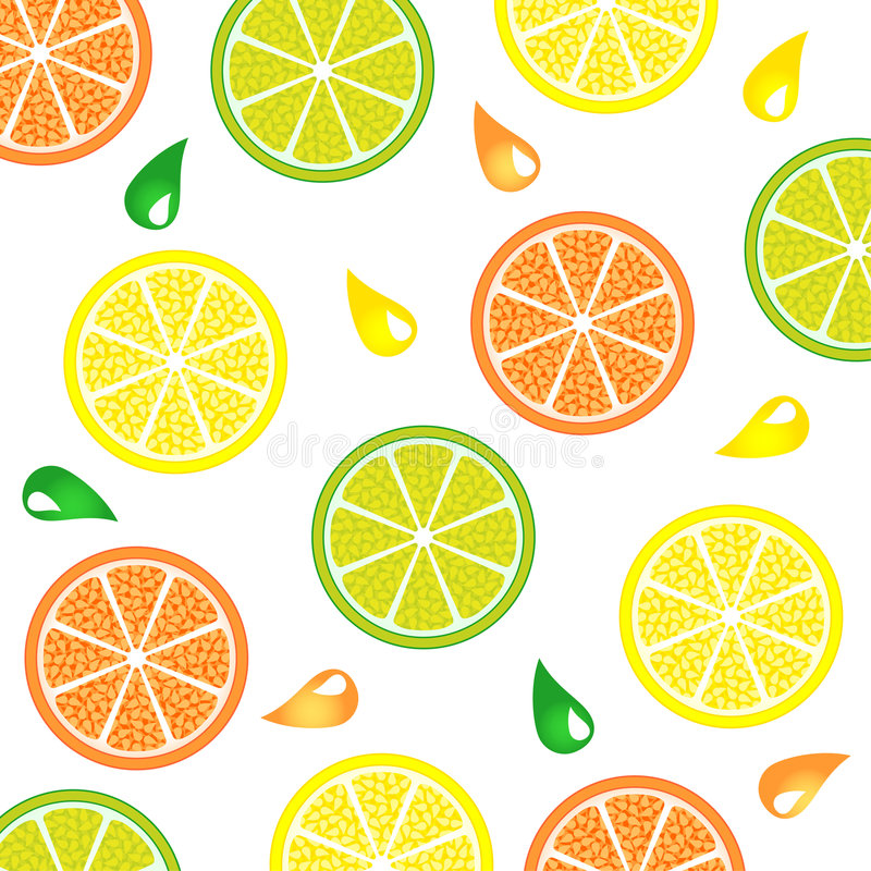 Citrus_pattern illustration stock