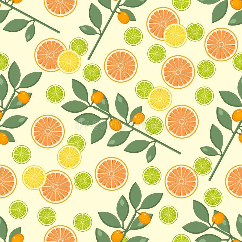 Citrus pattern. Fruit background. Summer bright background with lemon and orange. stock illustration
