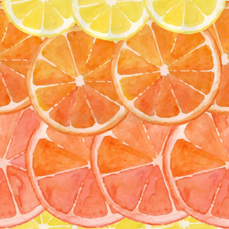 Citrus stock illustration