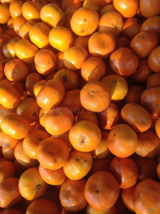 Citrus Reticulate Fruits for Sale Outdoors in the Sun. stock image