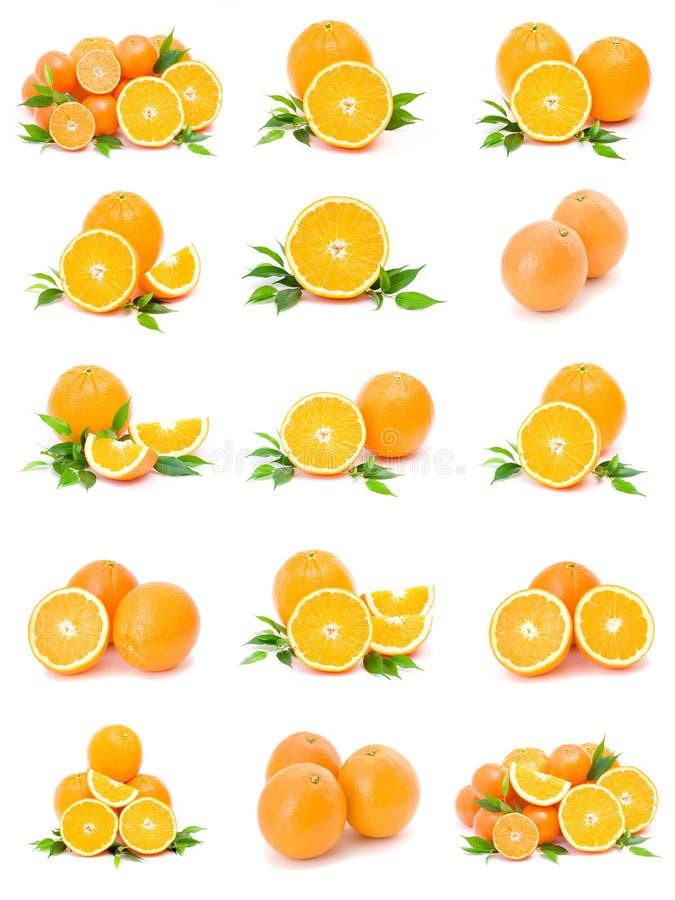 citrus samling arkivfoton
