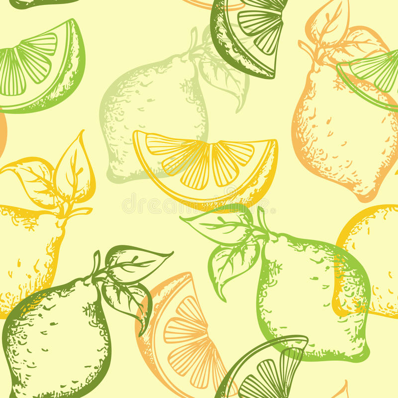 Citrus seamless pattern stock illustration