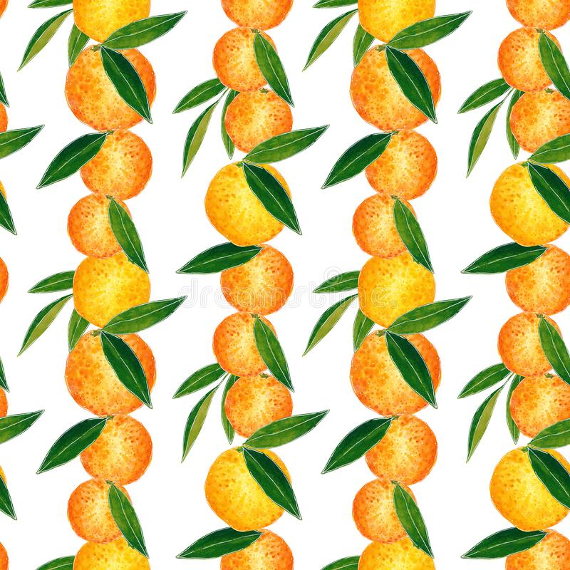 Citrus seamless pattern made of oranges. Hand drawn watercolor illustration. Citrus seamless pattern made of oranges and leaves, hand drawn botanical royalty free illustration