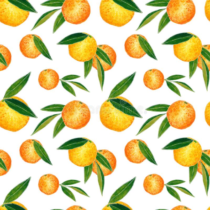 Citrus seamless pattern made of oranges and leaves. Hand drawn watercolor illustration. Citrus seamless pattern made of oranges and leaves, hand drawn botanical royalty free illustration