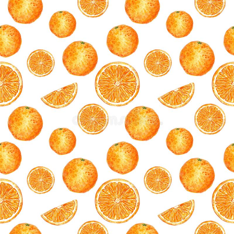 Citrus seamless pattern made of oranges and slices. Hand drawn watercolor illustration. Citrus seamless pattern made of oranges and slices, hand drawn botanical vector illustration