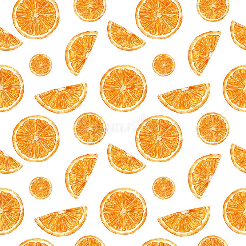 Citrus seamless pattern made of oranges slices. Hand drawn watercolor illustration. Citrus seamless pattern made of oranges slices, hand drawn botanical royalty free illustration