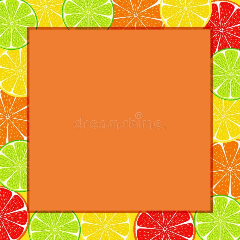 Citrus skivabakgrund royaltyfri foto
