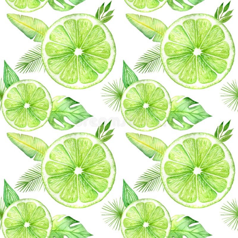 Citrus slice fruits watercolor hand drawn pattern. Orange, lemon, lime isolated on white background. For the design of stock photo