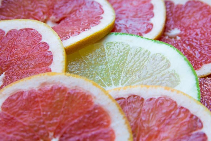 Citrus slices. Fresh citrus slices royalty free stock images
