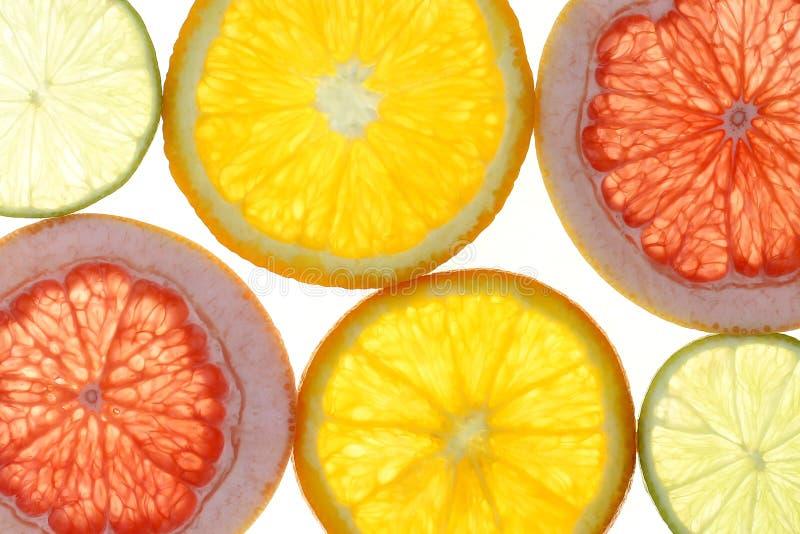 Citrus slices. Citrus fruits oranges lemons food background portrait format collection collage set fruit backgrounds stock photography