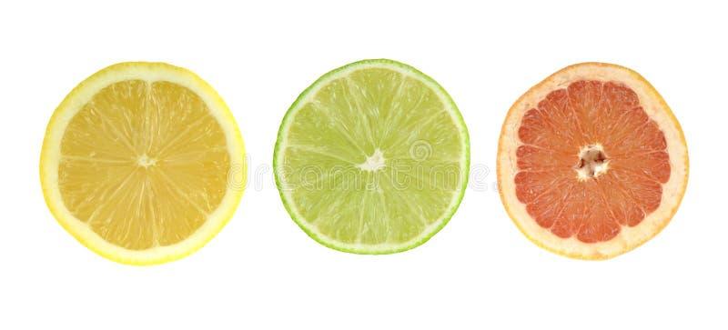 Citrus slices - lemon, lime, grapefruit. Colored set isolated on white background. royalty free stock photography