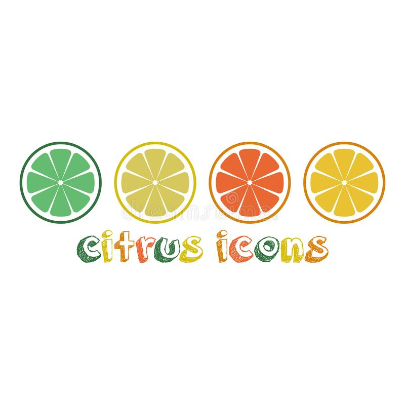 Citrus slices of lemon, orange, lime and grapefruit. Vector illustration. citrus icons in line and inscription stock illustration