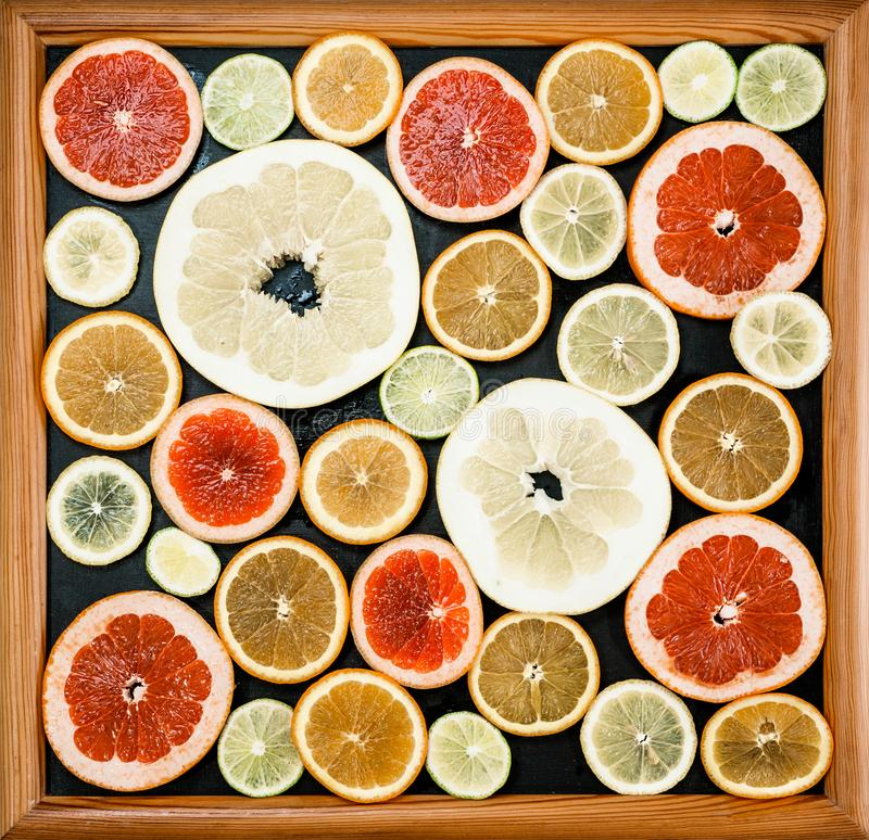 Citrus slices in picture frame. Fresh citrus fruits in different colours and sizes, cut into slices and laid out in a royalty free stock photography