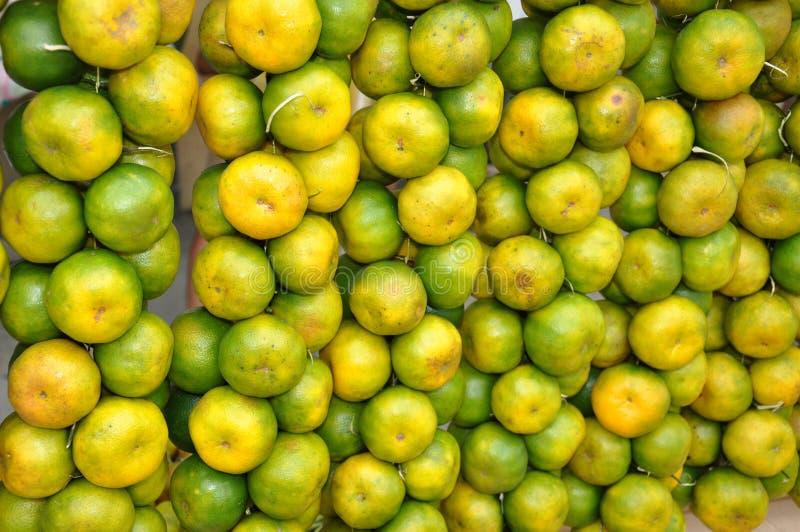 Citrus sweet orange stock images