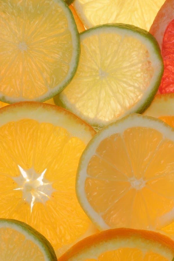 citrus tła plasterki obraz stock