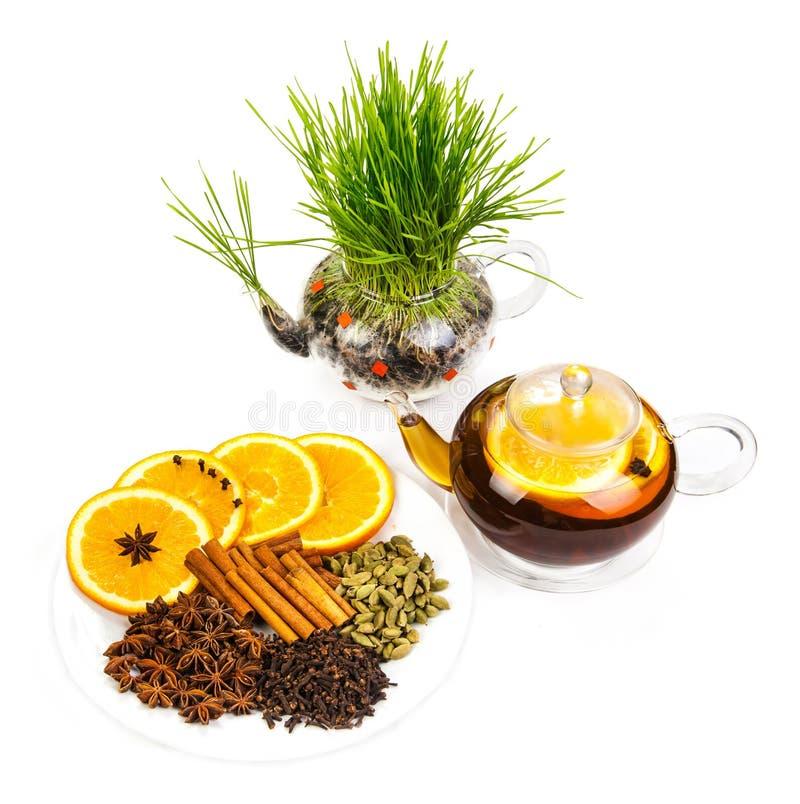 Citrus tea isolated on white background. Kettle with citrus tea isolated on white background stock images
