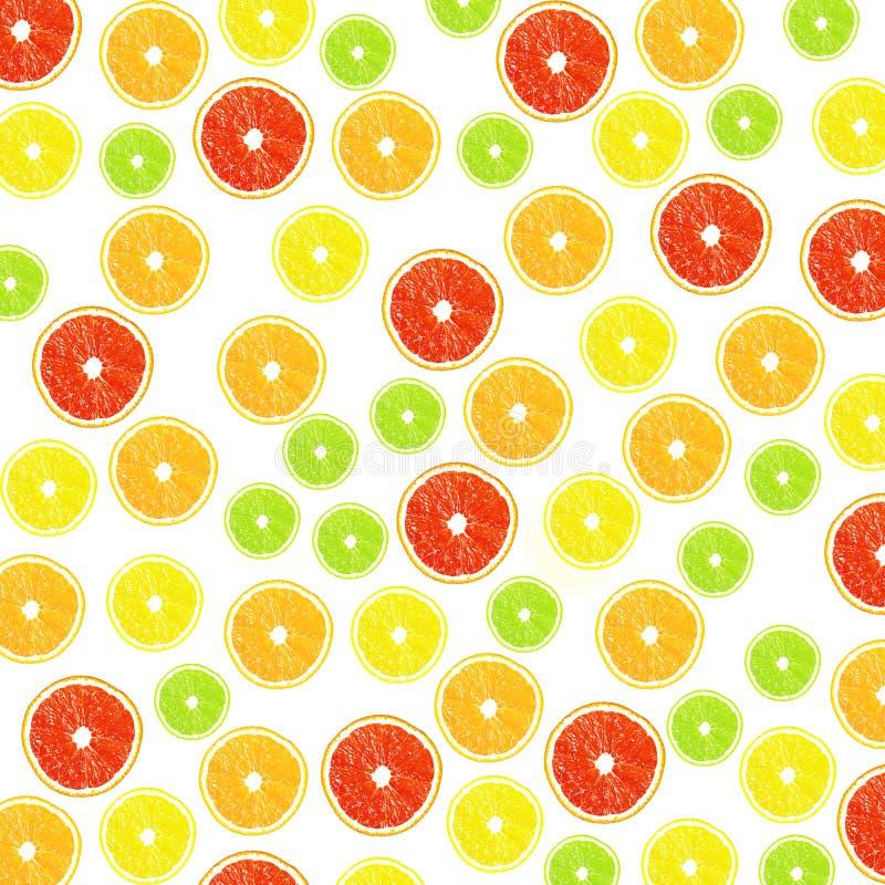 Citrus on a white background stock photos