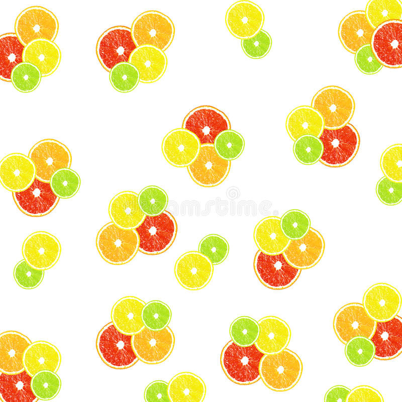 Citrus on a white background royalty free illustration