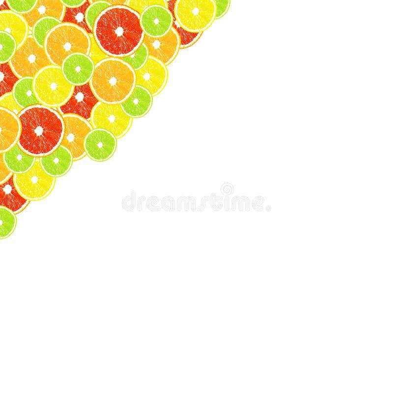 Citrus on a white background. Citrus on the white background stock photo