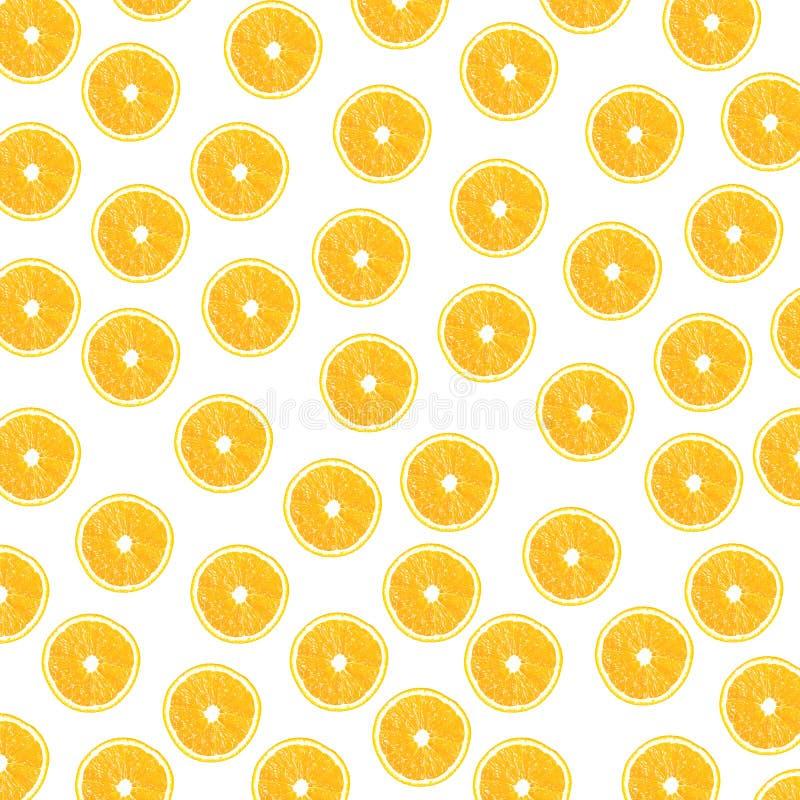 Citrus on a white background vector illustration