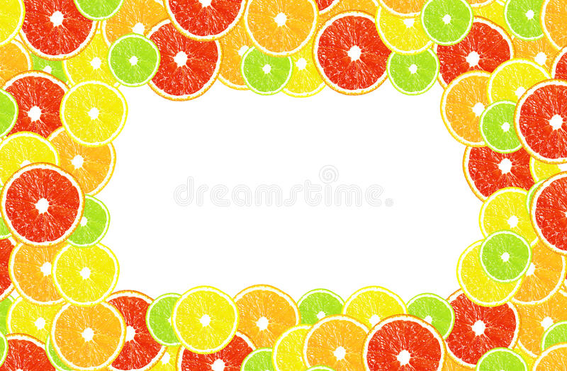 Citrus on a white background with frames for design stock photo