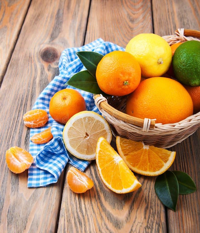 citrusa nya frukter arkivbild