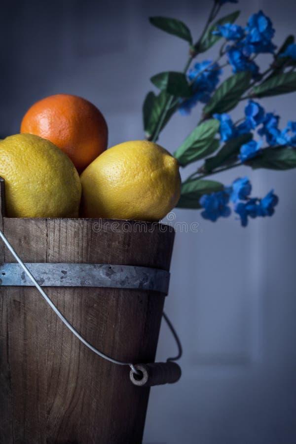 Citrusfrukt i en trähink royaltyfria foton