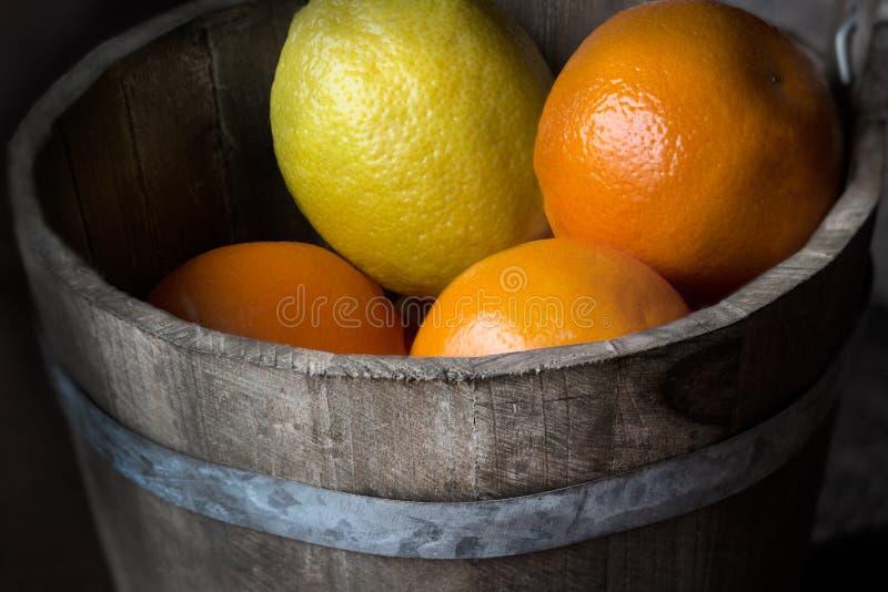 Citrusfrukt i en trähink royaltyfri fotografi